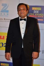at Zee Awards red carpet in Filmcity, Mumbai on 8th Feb 2014 (336)_52f77a6abd63a.JPG