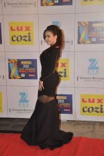 at Zee Awards red carpet in Filmcity, Mumbai on 8th Feb 2014 (4)_52f77a599bdc2.JPG
