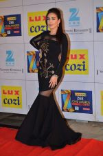 at Zee Awards red carpet in Filmcity, Mumbai on 8th Feb 2014 (40)_52f77a5c8365c.JPG