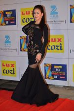 at Zee Awards red carpet in Filmcity, Mumbai on 8th Feb 2014 (41)_52f77a5cde0b2.JPG