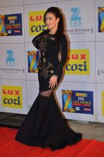 at Zee Awards red carpet in Filmcity, Mumbai on 8th Feb 2014 (42)_52f77a5d46ffe.JPG
