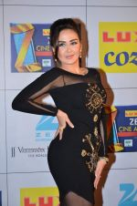 at Zee Awards red carpet in Filmcity, Mumbai on 8th Feb 2014 (43)_52f77a5da713e.JPG