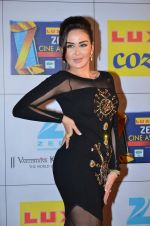at Zee Awards red carpet in Filmcity, Mumbai on 8th Feb 2014 (44)_52f77a5e0f629.JPG