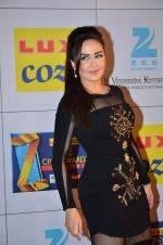 at Zee Awards red carpet in Filmcity, Mumbai on 8th Feb 2014 (46)_52f77a5e6a4f6.JPG