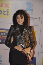 at Zee Awards red carpet in Filmcity, Mumbai on 8th Feb 2014 (5)_52f77a5a00d03.JPG