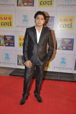 at Zee Awards red carpet in Filmcity, Mumbai on 8th Feb 2014 (6)_52f77a5a5b38f.JPG