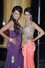 Brinda Parekh_s wedding bash in Powai, Mumbai on 10th Feb 2014 (104)_52f9b30dc291a.JPG