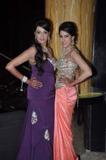 Brinda Parekh_s wedding bash in Powai, Mumbai on 10th Feb 2014 (106)_52f9b30e80bd6.JPG