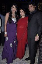 Brinda Parekh_s wedding bash in Powai, Mumbai on 10th Feb 2014 (112)_52f9b310b3a40.JPG