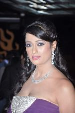 Brinda Parekh_s wedding bash in Powai, Mumbai on 10th Feb 2014 (91)_52f9b33299613.JPG