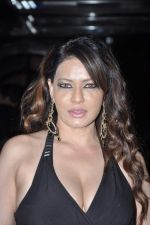 Poonam Jhawar at Brinda Parekh_s wedding bash in Powai, Mumbai on 10th Feb 2014 (51)_52f9b3354a1e2.JPG