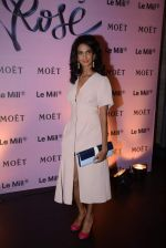 Poorna Jagannathan at rose moet launch live feed from the event in Mumbai on 13th Feb 2014(153)_52fdf81a96bc0.JPG