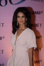 Poorna Jagannathan at rose moet launch live feed from the event in Mumbai on 13th Feb 2014(158)_52fdf86377456.JPG
