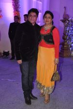 Anand Raj Anand at Miraj Group_s Madan Paliwal_s daughter Devdhooti and Vikas Purohit_s reception in Udaipur on 18th Feb 2014 (250)_5305c8d807521.JPG