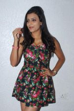 Jyoti Sethi at sex and demon photo shoot in Nirvana Studio, Oshiwara on 19th Feb 2014 (172)_5305caeb90603.JPG