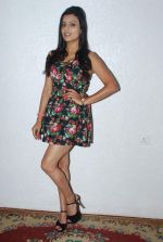 Jyoti Sethi at sex and demon photo shoot in Nirvana Studio, Oshiwara on 19th Feb 2014 (189)_5305caf2b69c0.JPG