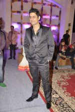 Mohit Raina at Miraj Group_s Madan Paliwal_s daughter Devdhooti and Vikas Purohit_s reception in Udaipur on 18th Feb 2014 (192)_5305c9b7a139f.JPG
