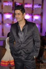 Mohit Raina at Miraj Group_s Madan Paliwal_s daughter Devdhooti and Vikas Purohit_s reception in Udaipur on 18th Feb 2014 (197)_5305c9bb64825.JPG