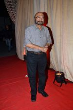 Govind Nihalani at Rajiv and Megha_s wedding reception in Sahara Star, Mumbai on 25th Feb 2014 (82)_530dd2687c6b9.JPG