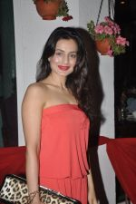 Amisha Patel at Gangs of Ghost Music Launch in Mumbai on 26th Feb 2014 (5)_530ea8a9d2fd3.JPG
