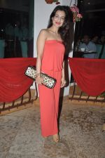 Amisha Patel at Gangs of Ghost Music Launch in Mumbai on 26th Feb 2014 (7)_530ea89e7d8d5.JPG