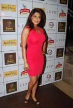 Rinku Ghosh at Amore party in LEVO, Mumbai on 26th Feb 2014 (31)_530eeb589e356.JPG