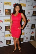 Rinku Ghosh at Amore party in LEVO, Mumbai on 26th Feb 2014 (32)_530eeb596ca47.JPG