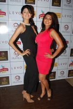 Vindhya Tiwari, Rinku Ghosh at Amore party in LEVO, Mumbai on 26th Feb 2014 (36)_530eeb5d3a5a1.JPG