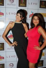 Vindhya Tiwari, Rinku Ghosh at Amore party in LEVO, Mumbai on 26th Feb 2014 (37)_530eec3c2cd0e.JPG