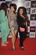 Sonu Kakkar, Neha Kakkar at Radio Mirchi music awards in Yashraj on 27th Feb 2014 (306)_531080d92b6dc.JPG