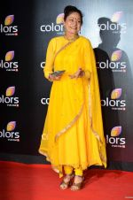 Aruna Irani at Colors red carpet in Grand Hyatt, Mumbai on 1st March 2014 (397)_5312fdda6eea2.JPG