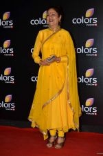 Aruna Irani at Colors red carpet in Grand Hyatt, Mumbai on 1st March 2014 (398)_5312fddad67cf.JPG