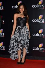 Hunar Hali at Colors red carpet in Grand Hyatt, Mumbai on 1st March 2014 (386)_5312ffaa2b49c.JPG