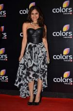 Hunar Hali at Colors red carpet in Grand Hyatt, Mumbai on 1st March 2014 (387)_5312ffac2685d.JPG