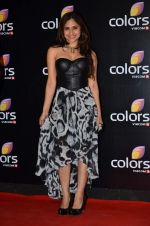 Hunar Hali at Colors red carpet in Grand Hyatt, Mumbai on 1st March 2014 (388)_5312ffae46108.JPG