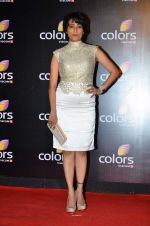 Meghna Malik at Colors red carpet in Grand Hyatt, Mumbai on 1st March 2014 (185)_531301591c18a.JPG