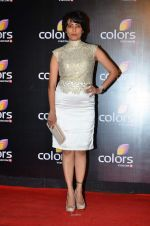 Meghna Malik at Colors red carpet in Grand Hyatt, Mumbai on 1st March 2014 (186)_5313015974f1a.JPG