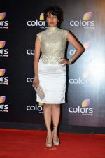 Meghna Malik at Colors red carpet in Grand Hyatt, Mumbai on 1st March 2014 (187)_53130159cc116.JPG