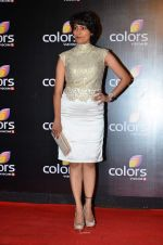 Meghna Malik at Colors red carpet in Grand Hyatt, Mumbai on 1st March 2014 (188)_5313015a2c976.JPG