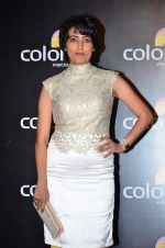 Meghna Malik at Colors red carpet in Grand Hyatt, Mumbai on 1st March 2014 (189)_5313015a832de.JPG