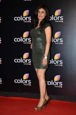 Ragini Khanna at Colors red carpet in Grand Hyatt, Mumbai on 1st March 2014 (308)_531301e9ea70a.JPG