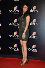 Ragini Khanna at Colors red carpet in Grand Hyatt, Mumbai on 1st March 2014 (309)_531301ea58aff.JPG