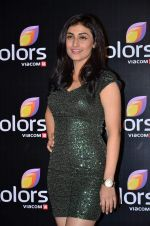 Ragini Khanna at Colors red carpet in Grand Hyatt, Mumbai on 1st March 2014 (310)_531301ead3aad.JPG