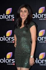 Ragini Khanna at Colors red carpet in Grand Hyatt, Mumbai on 1st March 2014 (311)_53130206c6a87.JPG
