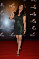 Ragini Khanna at Colors red carpet in Grand Hyatt, Mumbai on 1st March 2014 (312)_531301eb3edd7.JPG
