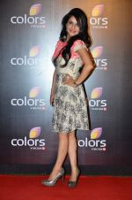 Roop Durgapal at Colors red carpet in Grand Hyatt, Mumbai on 1st March 2014 (298)_5313034cd6531.JPG