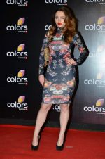 Saidah Jules at Colors red carpet in Grand Hyatt, Mumbai on 1st March 2014 (239)_531303fab54d6.JPG