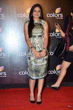 Toral Rasputra at Colors red carpet in Grand Hyatt, Mumbai on 1st March 2014 (293)_5313037580f0b.JPG
