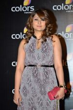 Urvashi Dholakia at Colors red carpet in Grand Hyatt, Mumbai on 1st March 2014 (285)_531305df25772.JPG