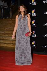 Urvashi Dholakia at Colors red carpet in Grand Hyatt, Mumbai on 1st March 2014 (282)_531305ddd318a.JPG